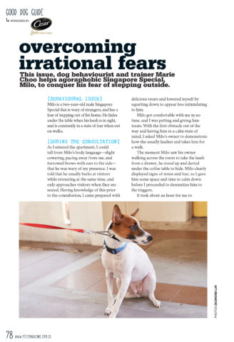 Good Dog Guide - Irrational Fears_1