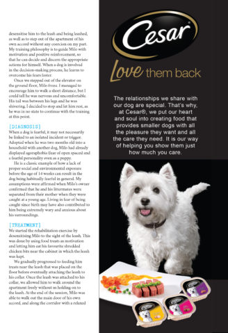Good Dog Guide - Irrational Fears_2
