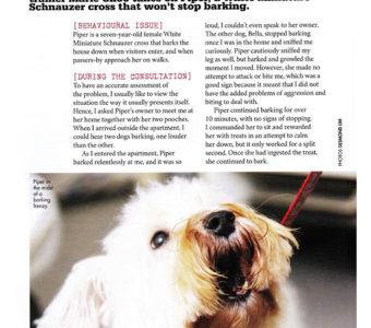 Pets Mag Feb_Mar 15-3