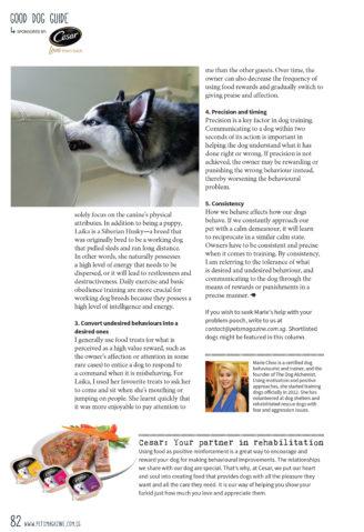 good dog guide_husky_3